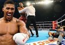 Anthony Joshua vs Undefeated Opponents